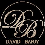 david_banjy_logo